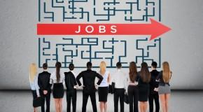 Bezrobocie maleje – gdzie szukać pracy?