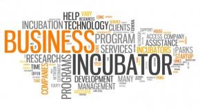 Inkubatory przedsiębiorczości wsparciem dla młodych przedsiębiorców