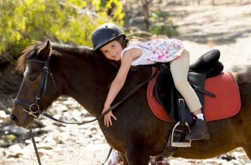 Pomysł na biznes – nauka jazdy konnej